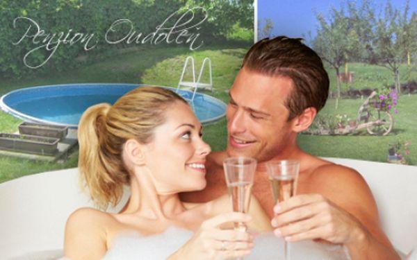 3denní WELLNESS pobyt pro DVA s polopenzí nebo týdenní pronájem pro ŠEST osob v Penzionu Oudoleň! Užijte si volné dny v srdci Vysočiny u bazénu, ve vířivce nebo sauně! K pobytu i masáž a sleva na kosmetické služby!