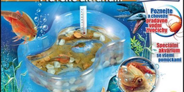 Pravěké akvárium. Vydejte se na cestu do pravěku - kousek ho můžete mít totiž i u vás doma.