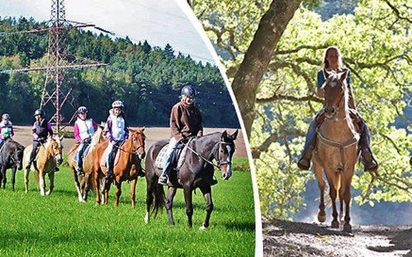 Vyjížďky na koních pro děti i dospělé - zažijte nejkrásnější pohled na svět