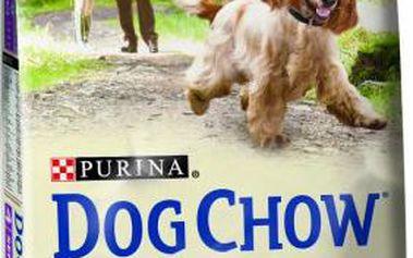Purina Dog Chow Senior Lamb 14 kg
