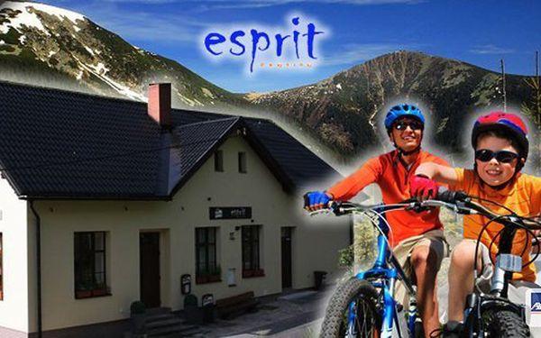 Luxusní dovolená v penzionu Esprit pro 2 osoby na 2 nebo 3 noci s bohatou polopenzí, vstupem do wellnes a dalšími výhodami u příležitosti 10. narozenin penzionu! Využijte nabídku, která se již nebude opakovat!