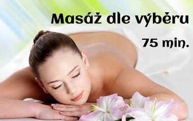Léčivá BREUSSOVA MASÁŽ v účinné kombinaci s odblokováním páteře a reiki nebo reflexní masáží! Užijte si 75 minut cílené péče o vaše zdraví od certifikované terapeutky s dlouhou praxí ve studiu Zelená oáza přímo v centru Prahy!