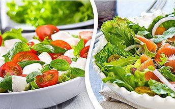 Lehounké saláty z čerstvé zeleniny U Písaře
