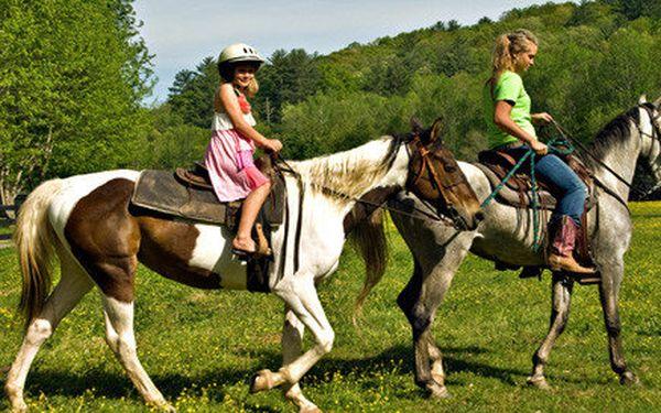 Letní tábor na farmě s konmi a zvířaty