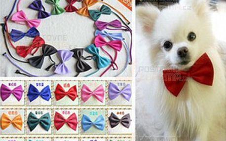 Mašle pro psy - více barev a poštovné ZDARMA! - 20811796