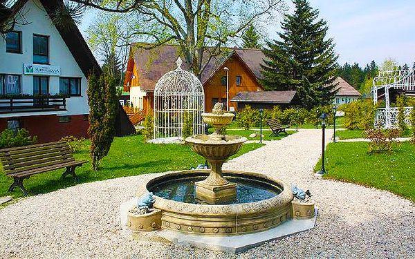 Luxusní wellness pobyt pro 2 v hotelu Harrachovka***+