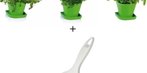 Tescoma souprava pro pěstování bylinek Sense + kráječ na bylinky Presto