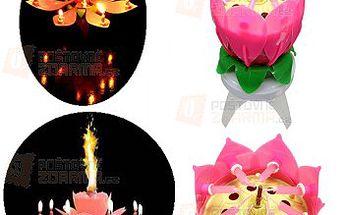 Narozeninové svíčky v podobě květiny a poštovné ZDARMA! - 23012375