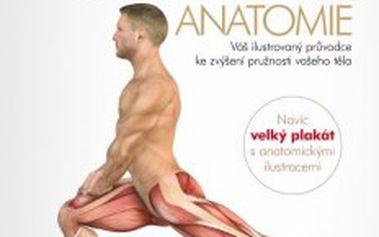 Strečink - anatomie Váš ilustrovaný průvodce ke zvýšení pružnosti vašeho těla
