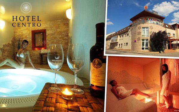 Luxusní wellness pobyt na Moravě