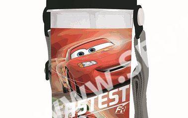 Karton PP Láhev na pití 650ml - Cars vhodná do školy, školky i pro volný čas