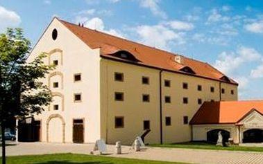 Pobyt pro 2 osoby na 3 dny (2 noci) v Zámeckém hotelu Ctěnice**** za skvělých 1399 Kč!