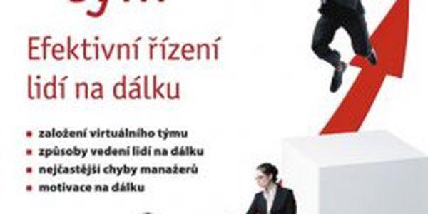Virtuální tým Efektivní řízení lidí na dálku