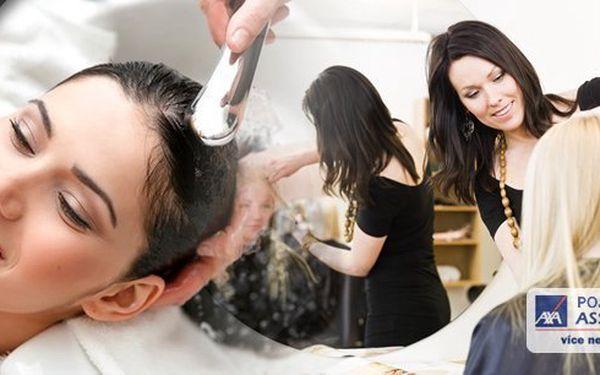 Kompletní kadeřnický balíček s profesionální vlasovou kosmetikou Alcina. Barva nebo melír, střih, mytí, maska, foukaná a finální styling pro všechny délky vlasů