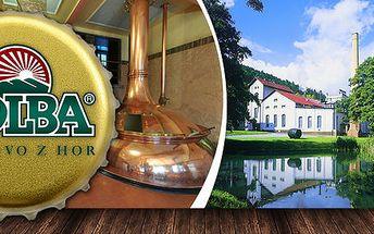 Prohlídka pivovaru Holba s ochutnávkou 4 piv