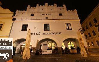 Podzimní TŘEBOŇ - hotel Bílý Koníček***: 3 dny v hotelu pro 2 s 1x večeří a welcome drinkem až do Vánoc