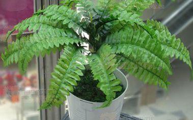 Umělá rostlinka a poštovné ZDARMA! - 29214041