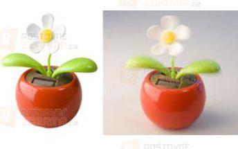 Tančící květina na solární energii a poštovné ZDARMA s dodáním do 3 dnů! - 31314055