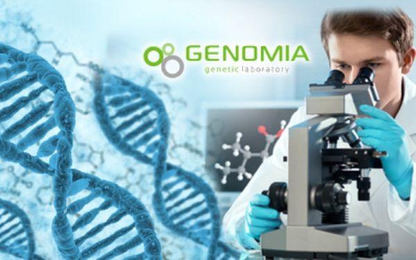 Genealogický DNA test mateřské nebo otcovské linie! Originální dárek na Vánoce! Vypátrejte svůj původ!