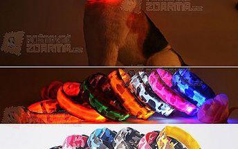Svítící LED obojek pro pejsky s vojenským vzorem a poštovné ZDARMA! - 30614380