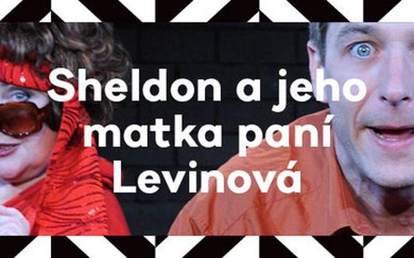 Sheldon a jeho matka paní Levinová