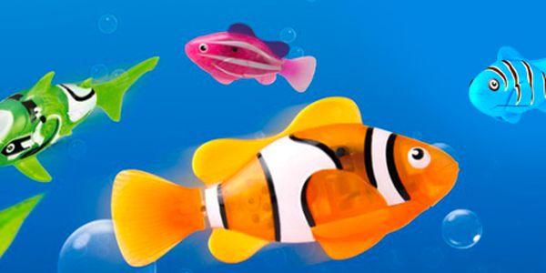 Robotická rybička: oblíbená hračka nejen do akvária. Výběr ze 4 barev!