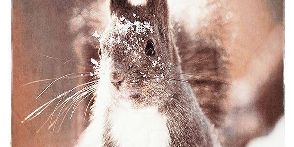 Kouzelná deka Squirrel, 150x130 cm