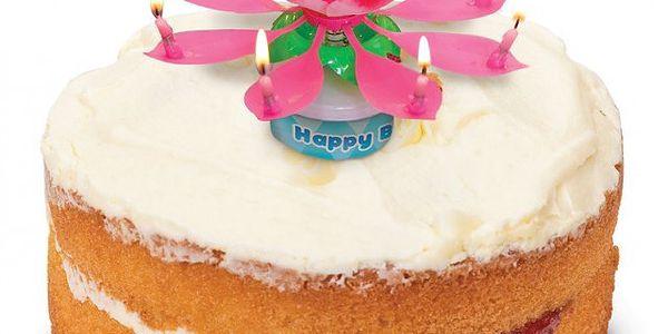 Hrající narozeninová květina - rozkvete, točí se a zpívá!
