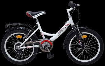 """City Rider 18"""""""