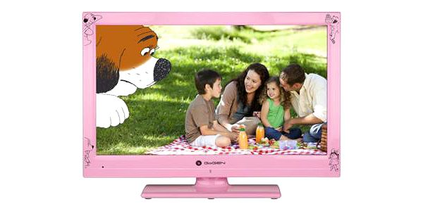 Televize GoGEN MAXI TELKA 22 P