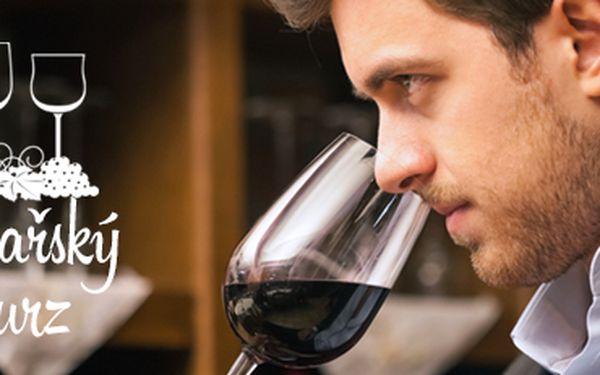 4hodinový vinařský kurz o evropských vínech s degustací 10 vzorků!