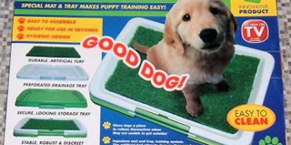 Již žádné nehody Vašeho psího miláčka v domě! Za skvělou cenu jen 295 Kč!