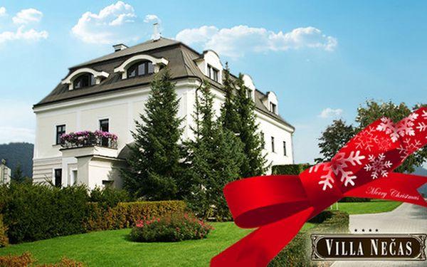 Dokonalý relax v historickém hotelu Villa Nečas****