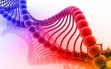Určení prapředků testem DNA až 80 000 let zpátky!