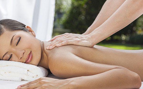 60minutová masaž celého těla dle výběru
