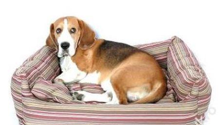 Krásný pelíšek pro psy 120x90x25
