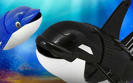 Robotická kosatka: plave, skáče, dělá kotrmelce! Objevte podvodní svět.