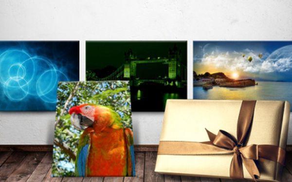 Obrazy do bytu na zakázku! Obrazy z vlastních fotografií či svítící / nesvítící obrazy! Na výběr z mnoha motivů!