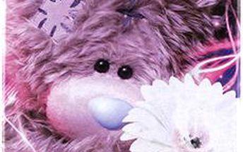 Trendový obal na iPhone s motivem medvídka Me to You
