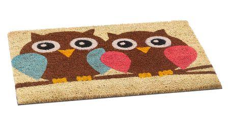 Vopi krásná vvnitřní rohožka Owls, 40 x 60 cm
