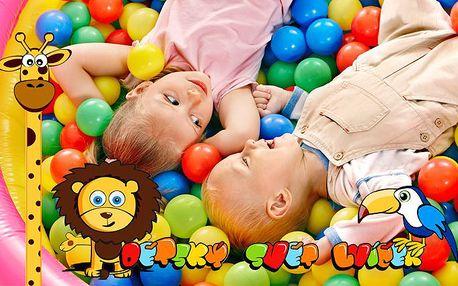 Celodenní vstup do úžasného dětského světa Lvíček v Plzni pro 1 osobu