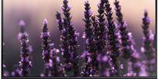 """Full HD televizor se základní výbavou pro menší místnosti s úhlopříčkou 32"""""""