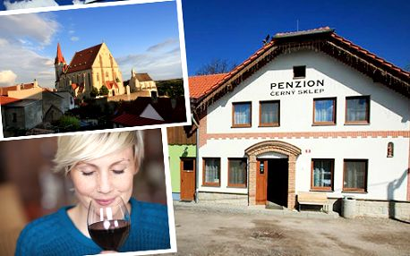 Vinařský pobyt s polopenzí a ochutnávkami vín - Vinařský pobyt s polopenzí a ochutnávkami vín ze Znojemské vinařské podoblasti ve vinařské uličce na předměstí historického města Znojma