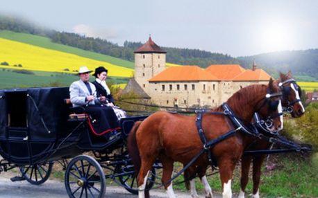 Projížďka v kočáře kolem hradu ŠVIHOV s dvojspřežím na 15 nebo 30 minut s upomínkovým dárkem!