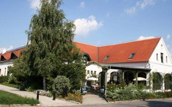 Malebné Hegykó , Maďarsko - 4 dny pro dva s polopenzí u termálních lázní , skvělé hodnocení!