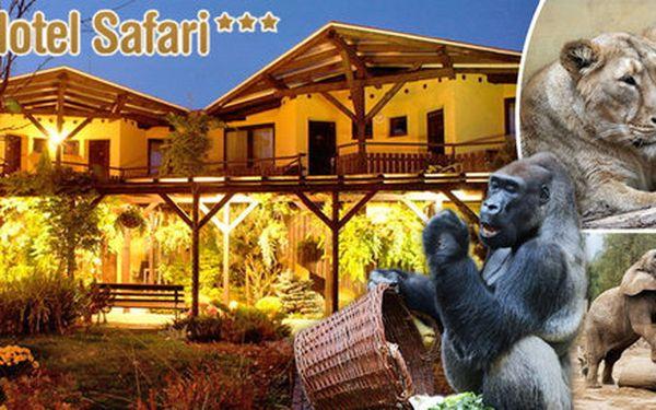 Noc v Hotelu Safari*** a prohlídka ZOO Dvůr Králové