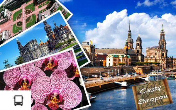 Největší výstava orchidejí v Německu