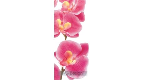 Fototapeta Orchidej růžová 90 x 202 cm, Hornschuch