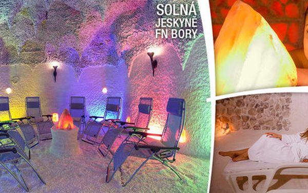 2 vstupy do vyhlášené solné jeskyně FN Bory