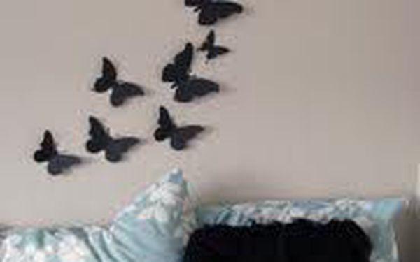 3D motýlci na zeď - ozdobte své zdi!